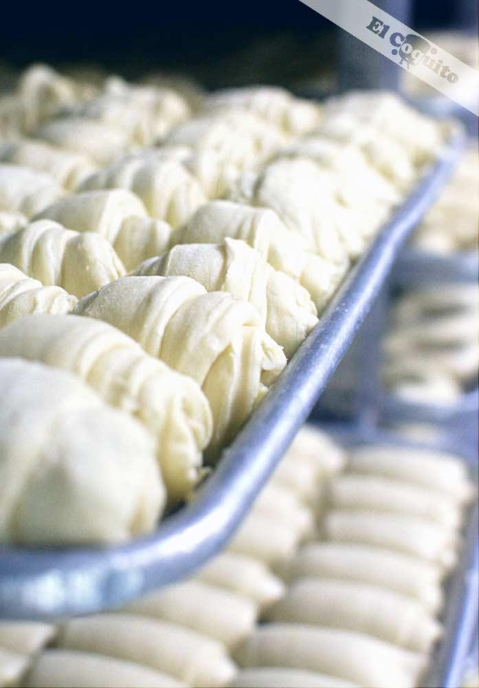 Congelados © panadería y pastelería El Coquito
